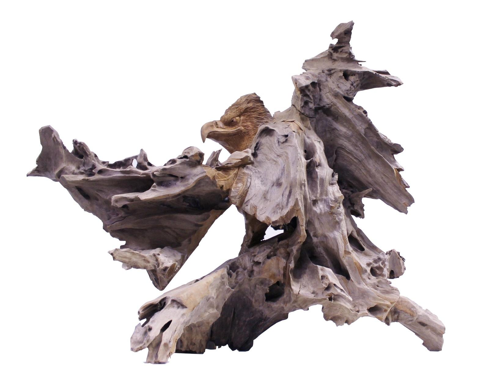 Teak Skulptur Adler gross No2 Wurzelholz